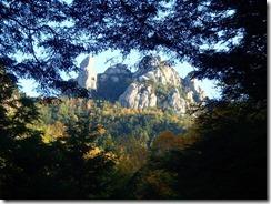 03木々の間から瑞牆山が見えています