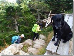 07金峰山小屋に到着、ワンちゃんが出迎えてくれました