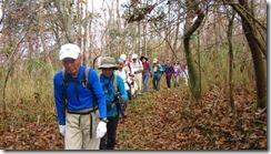 1-04自然林もありますIMG_3059