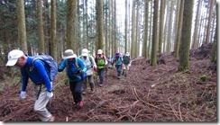 1-03最初は植林帯を上りますIMG_3057