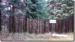 1-06林道分岐、道標IMG_3063