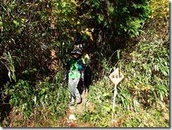 39林道へ下山しました