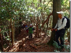 13急坂を下りながらカシノキヅルへ下山