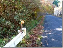 16兵戸林道のハナグロ登山口、カシノキヅルは左前方