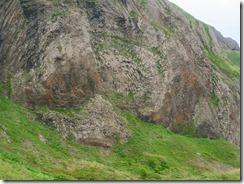 17桃岩の種