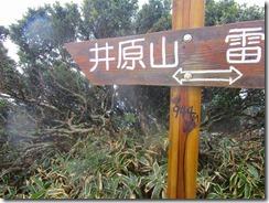 20 井原山へ向かいます
