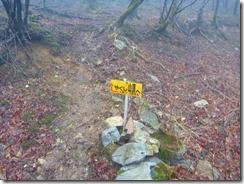 10やくし山登山口(林道)へ下山しました