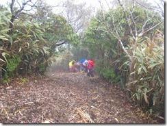 19トンギリ山最後の急登