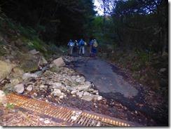 01キャンプ場から甘茶谷間が林道歩きになりましたP1100380