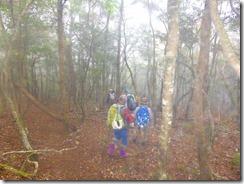 22林道への下山道