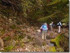 05登山口への林道