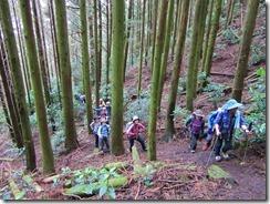 15 浮嶽への登り