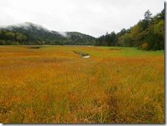 03浅湖湿原