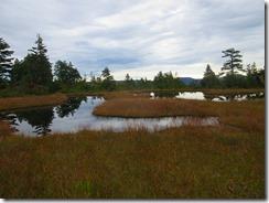 07数多くの池塘が点在する