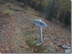1-02稜線に上がりました。今日は積岩山へ