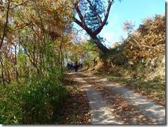 05シイタケ栽培のため林道が舗装されています