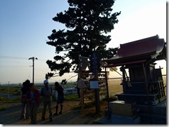 29 津波に会った日和山の松を見学し、震災の凄さを改めて実感した。