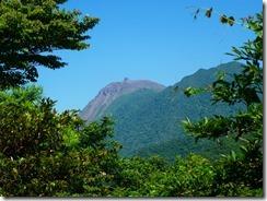39下山時、木々の間から平成新山が顔を覗かせました