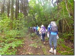 03当初は林道歩きです、すぐに登山道に張ります