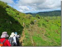 28登山道脇は耕作地です