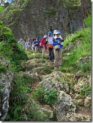 27下りは別の登山道、石灰岩がむき出しです