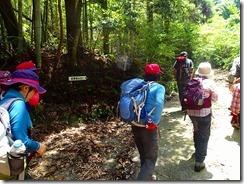 01岩稜登山口入口を出発