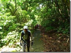 02登山口まで林道歩きです