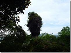 27磯間岳からの下山です、人形岩です