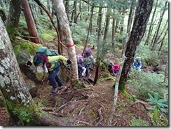 1-04樹林帯の急登P9112621