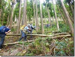 1-07植林地を登ります