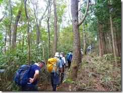 1-16笹が被さった登山道を登っていきます
