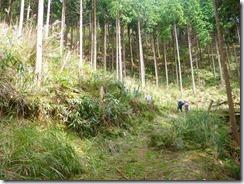 1-09最初の林道は右へ、すぐにUターンします