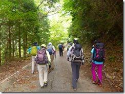1-02林道を4km歩いて登山口へ向かう