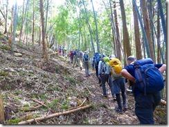 1-04竹林を進む