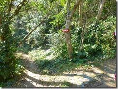 23稲荷神社へ下山します