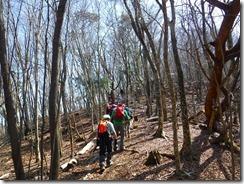 09穏やかな自然林を進みます