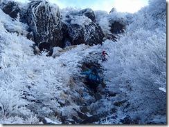 1-21夏道では大変な白口岳~鉾立峠の下山道