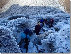 2-04大船山への急登、樹氷がきれいです