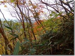 17山肌も紅葉が始まっていましたPB010084