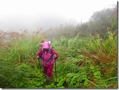 1-10登山道は草が伸び放題