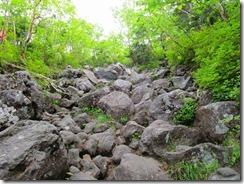 2-06岩だらけの登山道、ステップがきついです