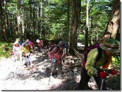 2-04荒れた登山道を登ります