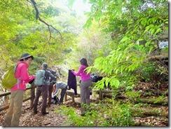1-04滝そばの野鳥観測小屋前