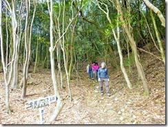 1-06林道から再び登山道へ
