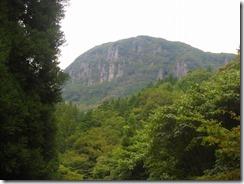 ⑦林道から万年山