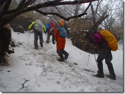 09さらに残雪の中を進みます