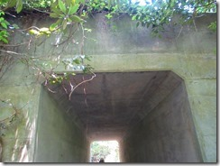 26トンネルをくぐる