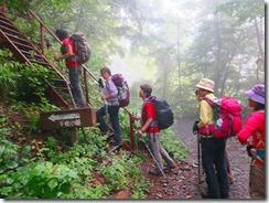 2-09林道からハシゴを登ります