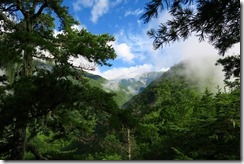 2-07樹林から荒川東岳(悪沢岳)を見る