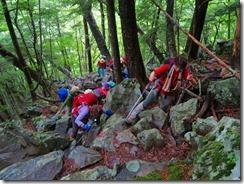 2-06落葉広樹林の急登を上ります